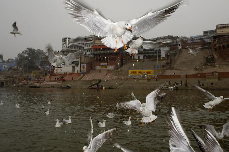 Ganges River, Varanassi. Rio Ganges, Varanassi.